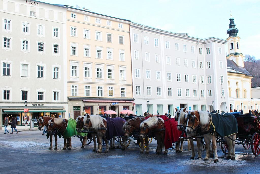 Salzburg city 3