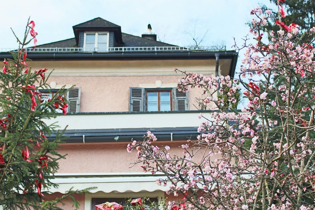 Salzburg city 4